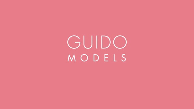 Guido Models (2015)